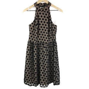 Ark & Co Halter Black Polka Dot Dress Sz Medium